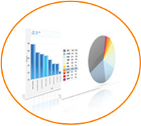 Comprehensive-customized-reports, customized ip management software